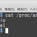 Linux Mint MateでPCオーディオ(8):常にUSBオーディオインターフェイスから音が出るようにする