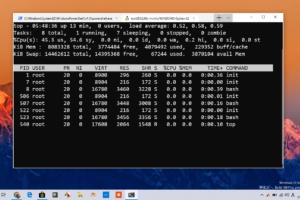 「Windows Terminal」(プレビュー版)がストアアプリとして登場。最新版の1903でインストール/利用可能。